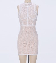 Rayon - Round Neck Sleeveless Mini Lace Party Bodycon Dress HJ624-White
