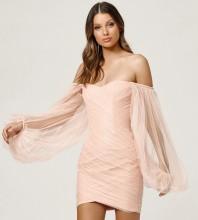 Pink Mesh Wrinkled Mini Long Sleeve Off Shoulder Bandage Dress HL8468-Pink
