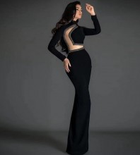 Black Beaded Mesh Maxi Long Sleeve High Neck Bodycon Dress HT2638-Black